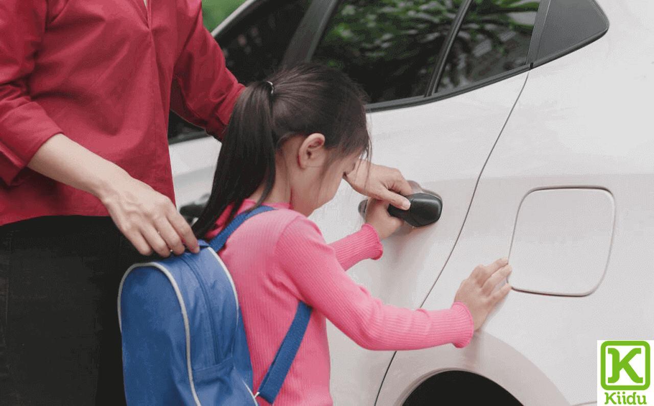 Nanny as a Driver